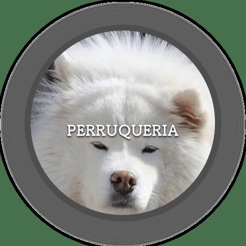 1a Perruqueria (500x500)