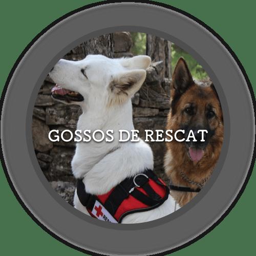 1a Rescat (500x500)