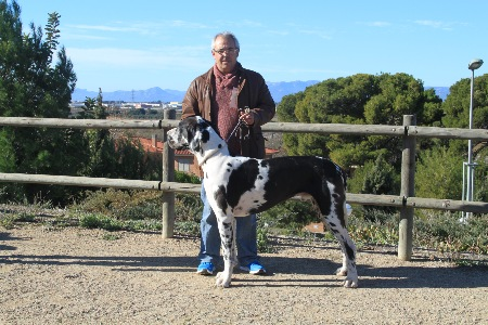 La Canonja 2015-01-25 (07)