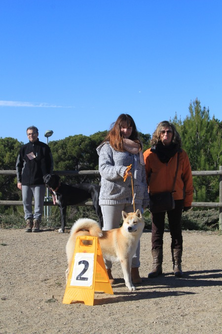 La Canonja 2015-01-25 (09)