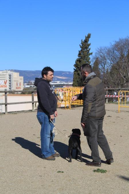 La Canonja 2015-01-25 (17)