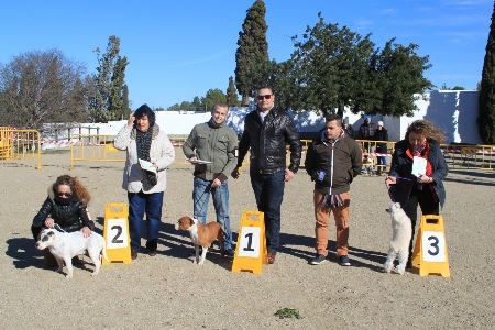 La Canonja 2015-01-25 (23)