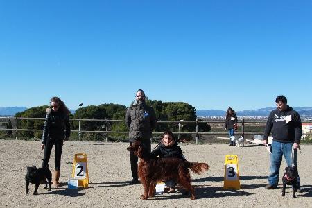 La Canonja 2015-01-25 (37)