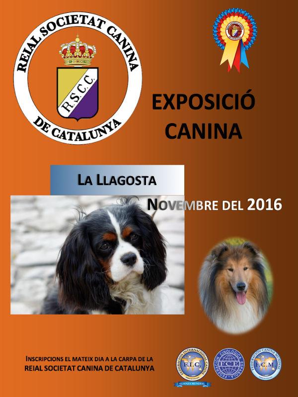 Expo canina - La Llagosta 2016