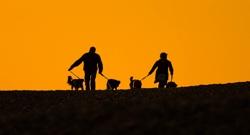 Passejadors de Gossos