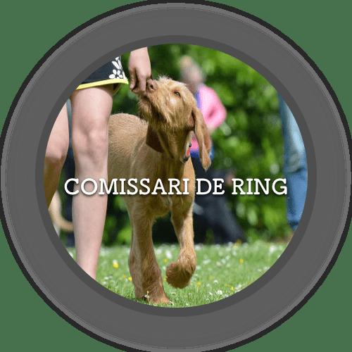 1a Comissari de Ring (500x500)