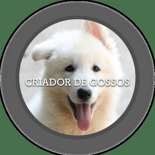 1a Criador (500x500)