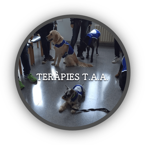 1a Terapies (500x500)