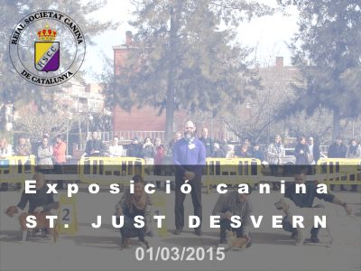 St. Just Desvern 2015-03-01 (800x600)