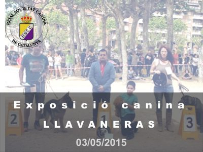St. Andreu de Llavaneres 2015-05-03 (800x600)
