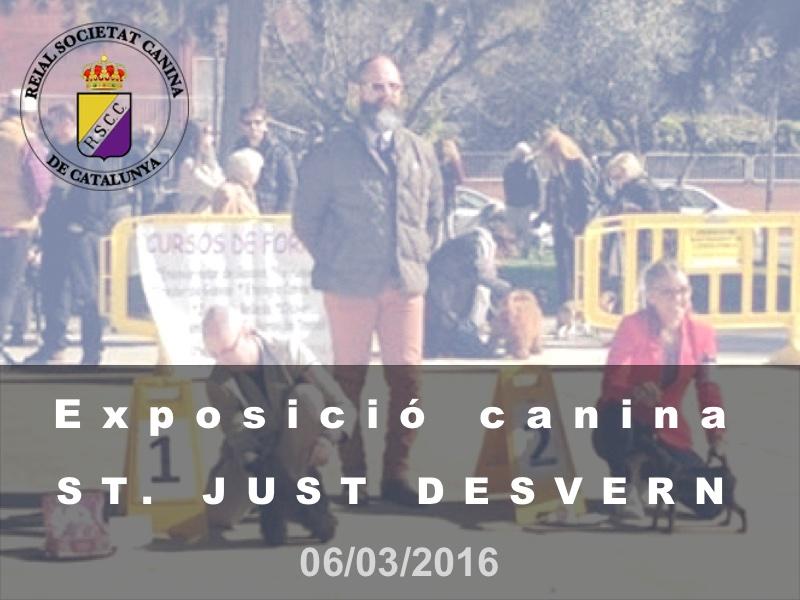 Sant Just Desvern 2016-03-06 (800x600)