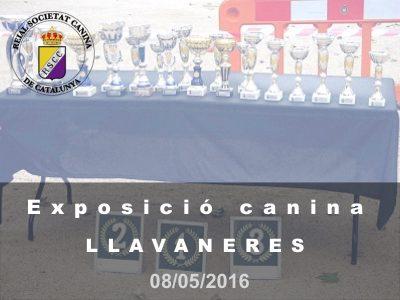 St. Andreu de Llavaneres 2016-05-08 (800x600)