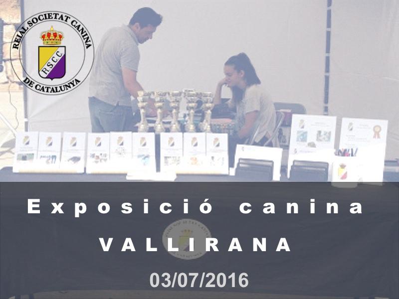 Vallirana 2016-07-03 (800x600)