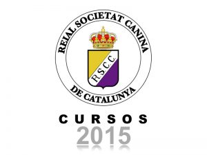 Galeria Cursos 2015 (800x600)