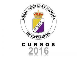 Galeria Cursos 2016 (800x600)