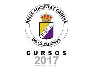 Galeria Cursos 2017 (800x600)