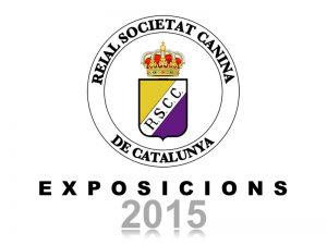 Galeria Exposicions 2015 (800x600)