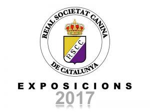 Galeria Exposicions 2017 (800x600)