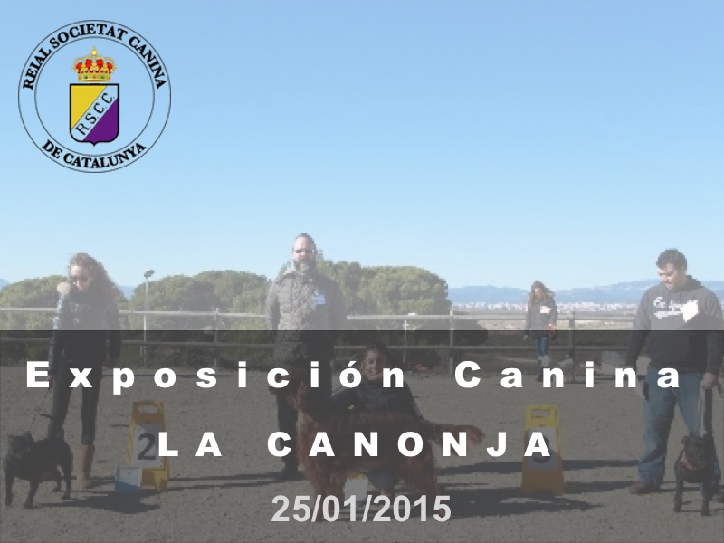 La Canonja 2015-01-25 (800x600) Cast