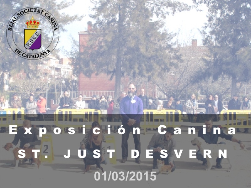 St. Just Desvern 2015-03-01 (800x600) Cast