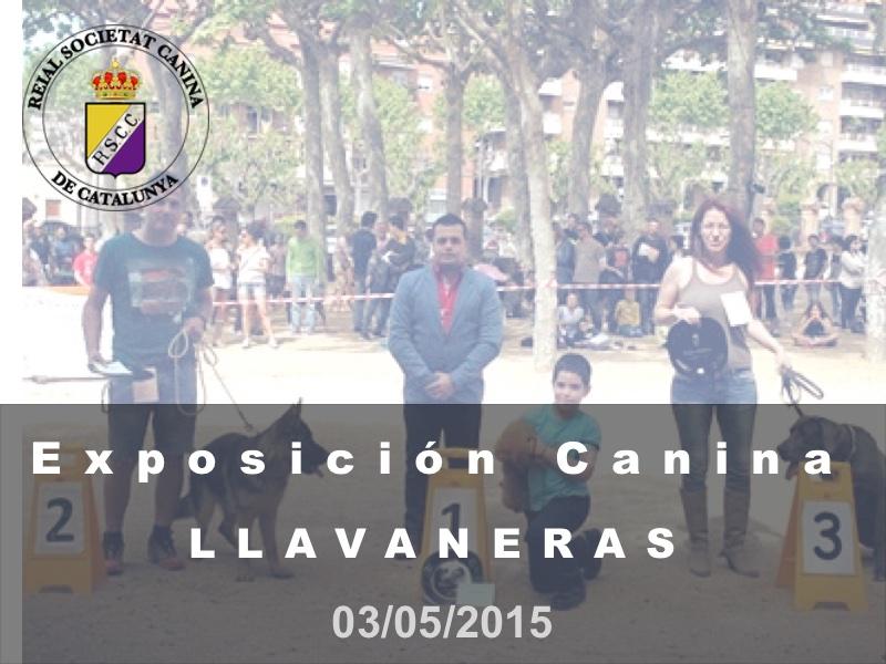 St. Andreu de Llavaneres 2015-05-03 (800x600) Cast
