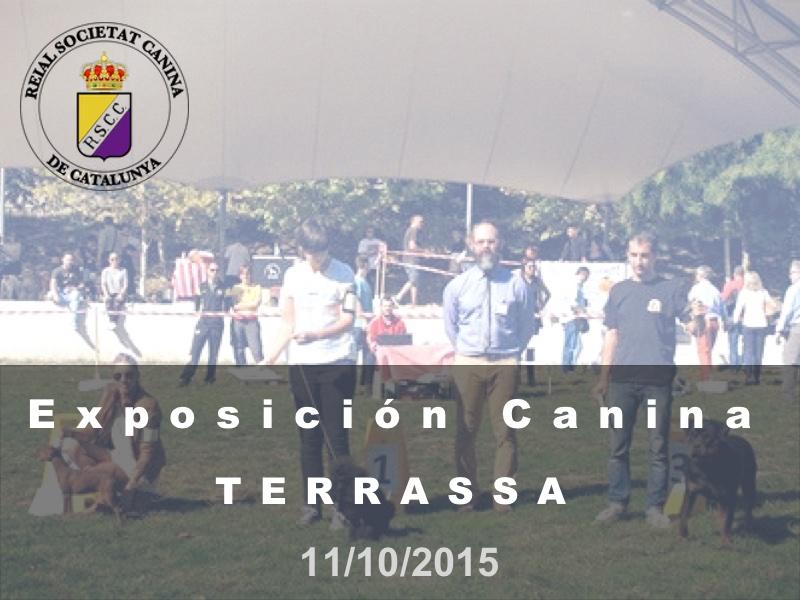Terrassa 2015-10-11 (800x600) Cast