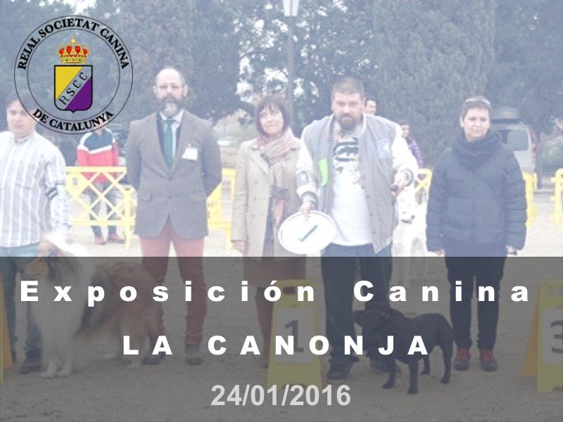 La Canonja 2016-01-24 (800x600) Cast
