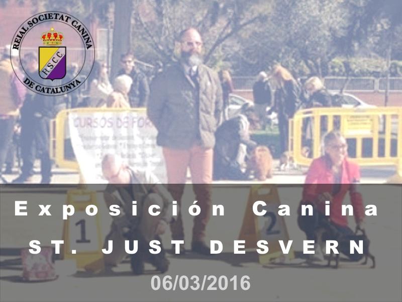 Sant Just Desvern 2016-03-06 (800x600) Cast