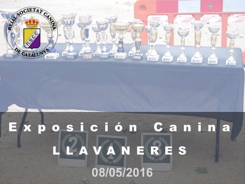 St. Andreu de Llavaneres 2016-05-08 (800x600) Cast