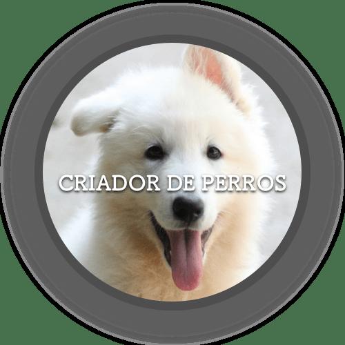 Criador de perros (500x500)