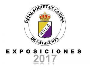 Galería Exposiciones 2017 (800x600)