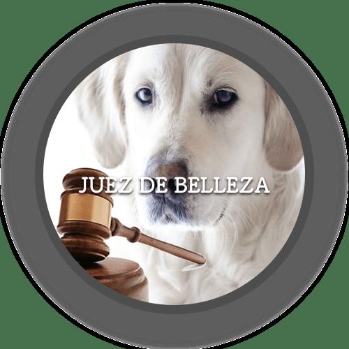 Juez de Belleza (500x500)