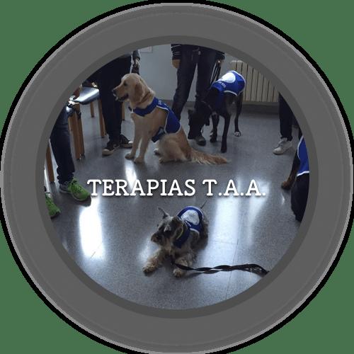 Terapias T.A.A. (500x500)