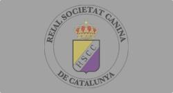 Logotip R.S.C.C. - Temporal